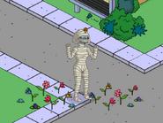 Womenhet Brightening Up Springfield