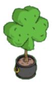 Shamrock Topiary