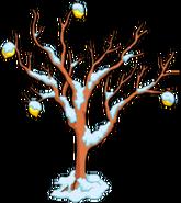 Lemontreewinter