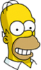 Homer Happy Icon.png