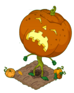 Grand-pumpkin-1