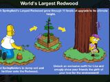 World's Largest Redwood
