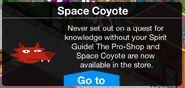 SpaceCoyoteStore
