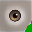 0x266F957704D3C5D4 hazel eyes copy.png