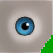 0x7882EE328F843230 ltblue eyes copy.png