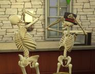 TS4 Два скелета