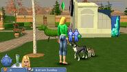 The Sims 2 Pets PSP Screenshot 03