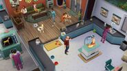 TS4 Cats and Dogs 5