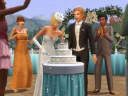 The Sims 3 Generations Screenshot 2