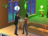 Sims2LampBroken