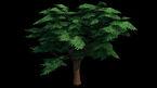 Les Sims 4 Concept Michael Long 2