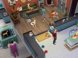 Clinique vétérinaire