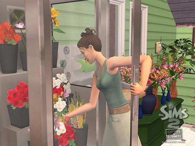 Les Sims 2 La Bonne Affaire 15.jpg