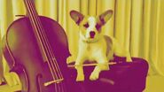 Sims 4 Cats and Dogs Music Inspiration