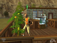 The Sims 2 (console) Screenshot 1