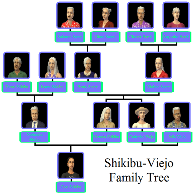 Shikibu-Viejo Family Tree.png