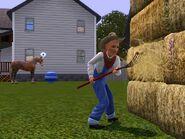 Jack farming
