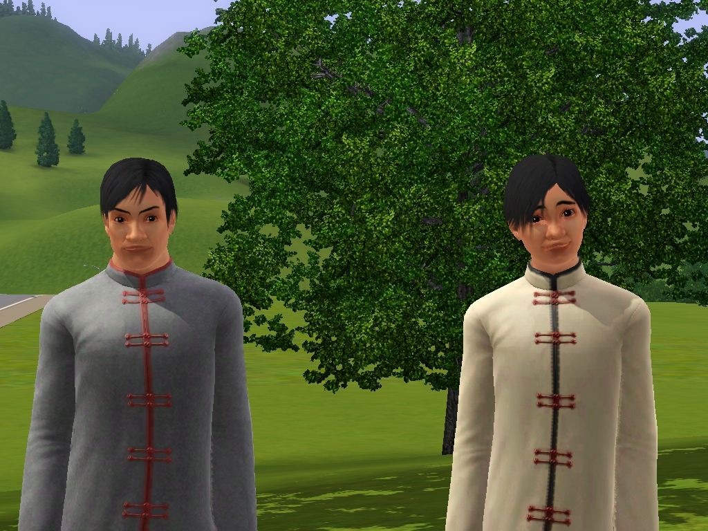 Su family (Shang Simla)