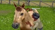 The Sims FreePlay - Saddle Up Out Now on Google Play!