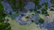 Deep Woods wild plant spot