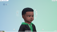 TS4 Patch 109 hair 6