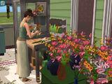 Preparación de Flores