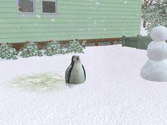 235px-Pingvin.jpg