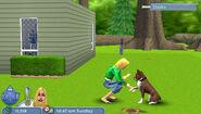The Sims 2 Pets PSP Screenshot 05