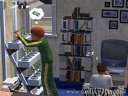Sims2TeenLife2