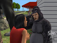 TS2OFB Gallery 30