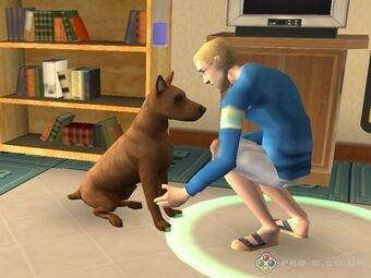 Sims 2 Control Pets