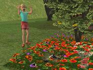 The Sims 2 Pets Screenshot 13