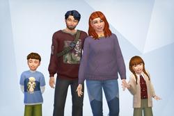 Akiyama family.png