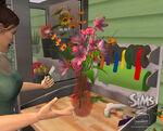 Les Sims 2 La Bonne Affaire 27