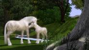 LS3 Fauna Img 09
