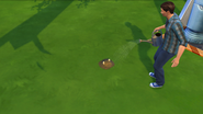 TS4 Cowplant Sprout Stage