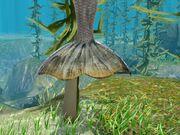 Screenshot-mermaid-female