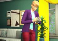 Sim with FutureCube