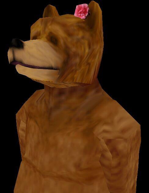 Claire the Bear.jpg