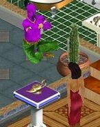 Sims1 Genie