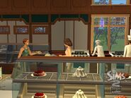 TS2OFB Gallery 13