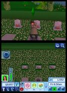 TS3 nintendo 3ds screen 02