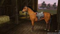 PferdScreenshot1
