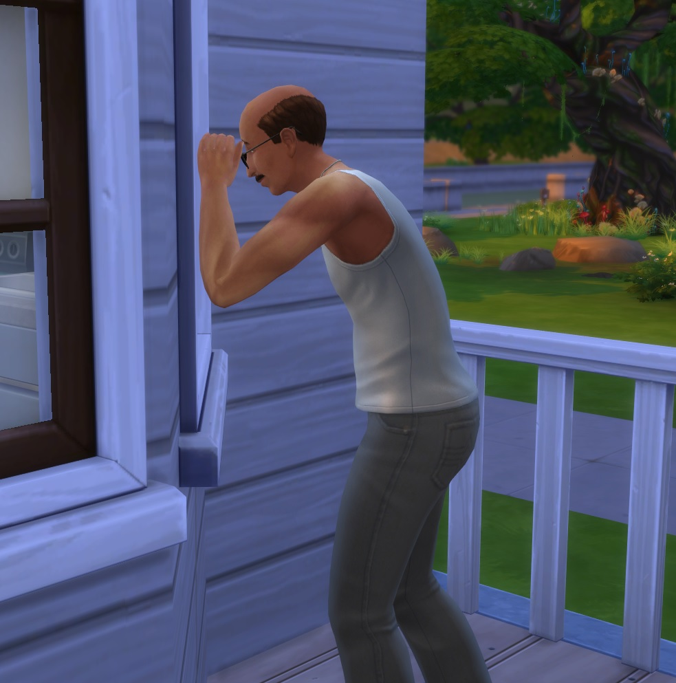 Sims 4 Wicked Whims Animations