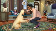 TS4 Cats and Dogs 2