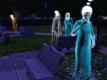 Riverview-graveyard