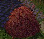 Les Sims 3 Saisons 44