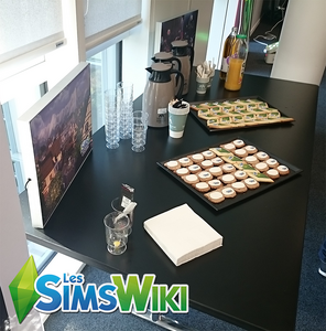 Ambiance - Les Sims 4 Vivre Ensemble 04