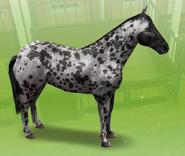 Gris moteado Sims Freeplay