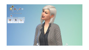 TS4 Patch 113 likes and dislikes
